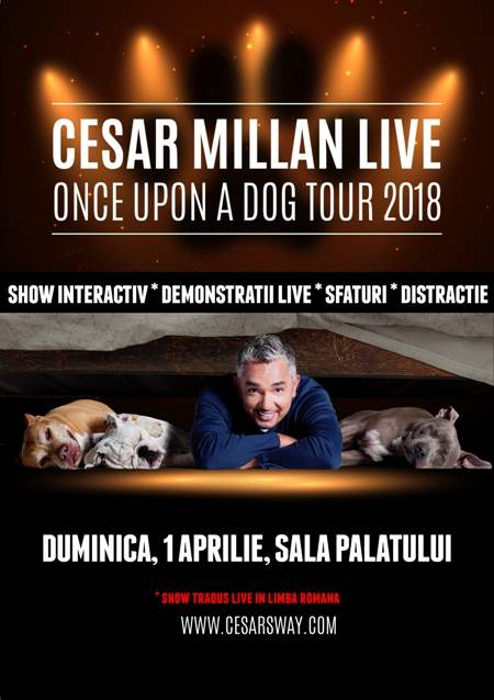 Poster Cesar Millan Live - Once Upon a Dog