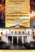 Iarna: Concert de Anul Nou 2019