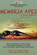 MEMORIA APEI