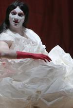 Povestea printesei deocheate / The Scarlet Princess
