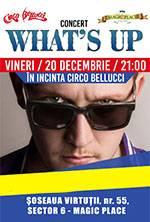What's Up Concert in incinta Circul Bellucci