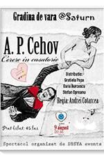 Cerere in casatorie de A.P.Cehov