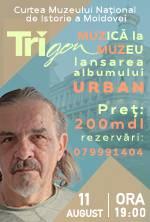 Muzica la Muzeu Trigon